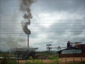 Palmöl-Fabrik
